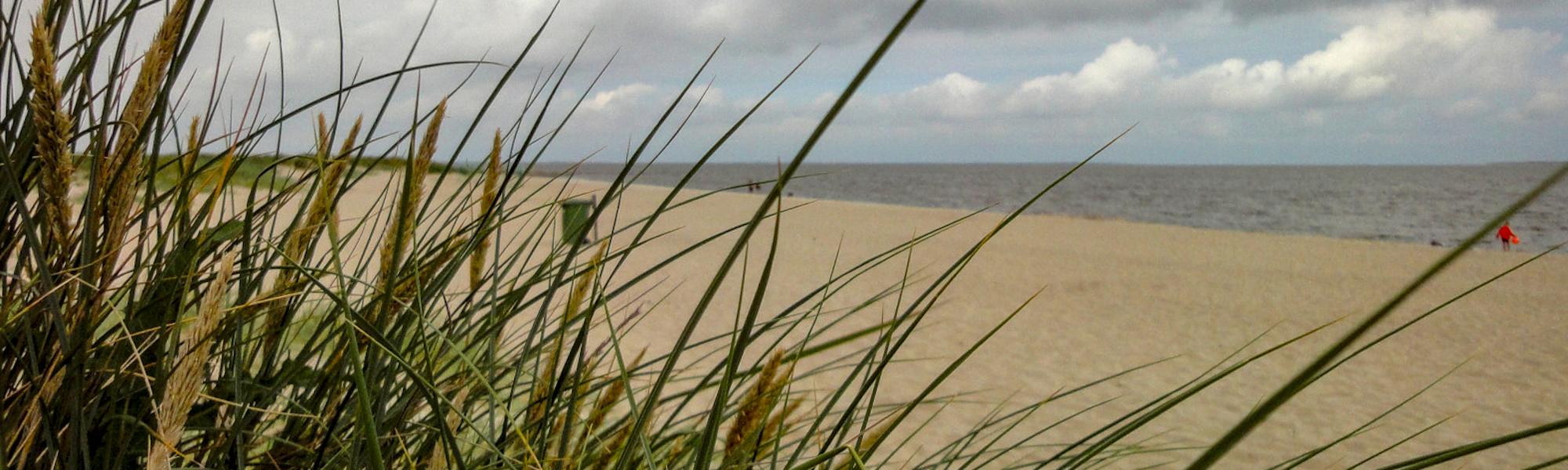 Auf ins Friesland: Moin, moin Schillig!